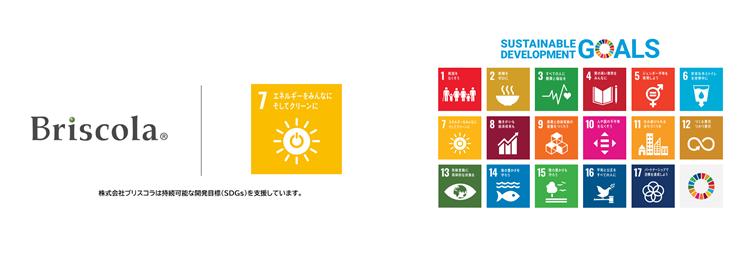 4_SDGs.png